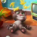 Скачать игру кота на телефон