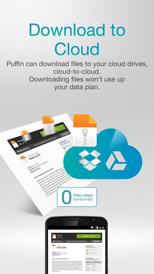 Puffin Browser For Windows Vista - networklinoa