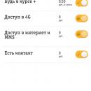 moj-beeline-5