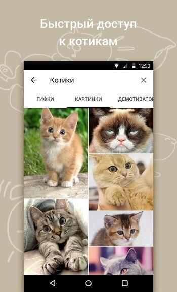 Быстрый доступ к котикам
