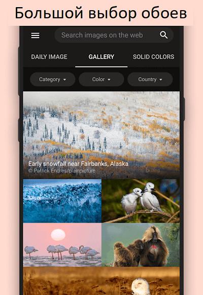 Скачать приложение Bing Wallpapers